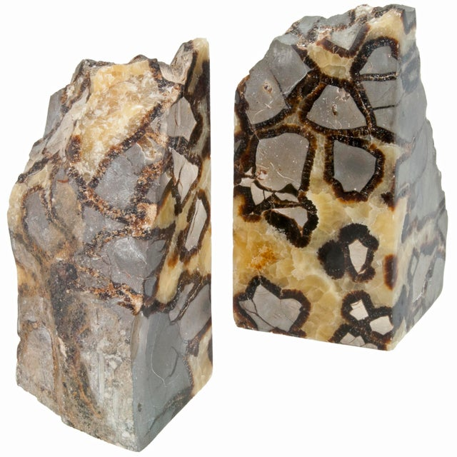 Pair Of Polished Septarian Stone Bookends - Image 2 of 4