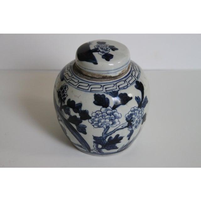 Image of Chinese Bird Ginger Jar