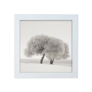 "Ari Salmela ""Different Season"" Framed Photo Print"