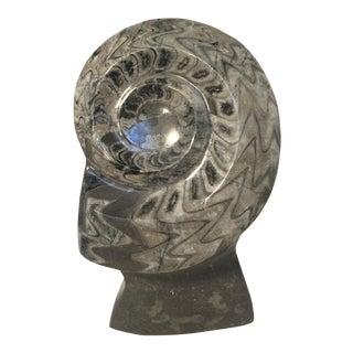 Nautilus Shell Fossil Sculpture