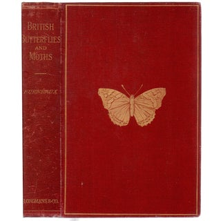 Butterflies & Moths British Book