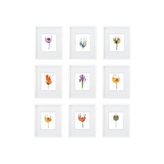 Botanical Groupings - Set of 9
