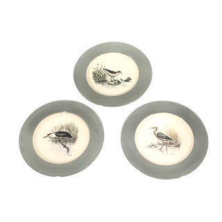 Dennis Puleston China Shore & Water Bird Plates - Set of 3