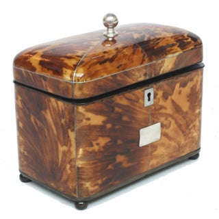 English Regency Tortoiseshell Tea Caddy