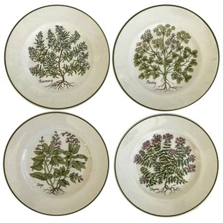 Tiffany & Co. Herbs Plates - Set of 4