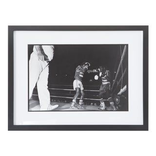 1980s Vintage Chicago Boxing Photos