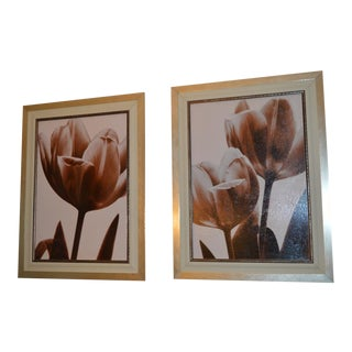 Gold Framed Gesso Floral Pictures - A Pair