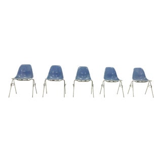 Eames for Herman Miller Blue Shell Chairs - Set of 5