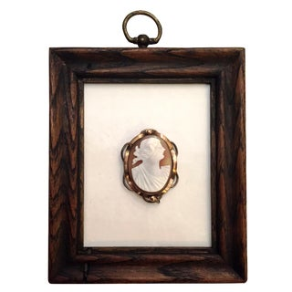 Framed Shell Cameo