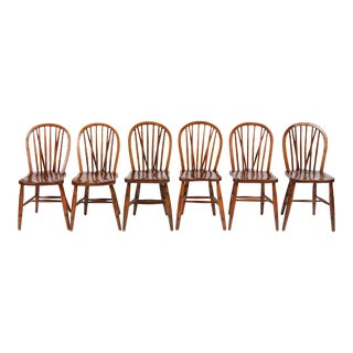 Antique English Windsor Chairs, S/6