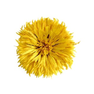 Yellow Feather Juju Headdress