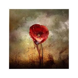 War Poppy 4, 2015 by Giles Revell