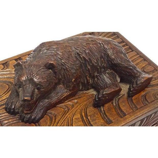 Antique Black Forest Carved Bear Box - Image 4 of 5