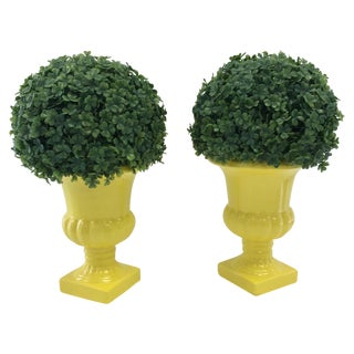 Faux Boxwoods in Yellow Urns - Pair