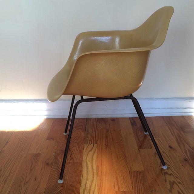 Vintage Herman Miller Eames Fiberglass Armchair - Image 3 of 8