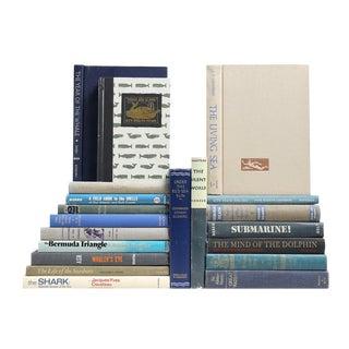 What Lies Beneath The Ocean Blue Books - Set of 20