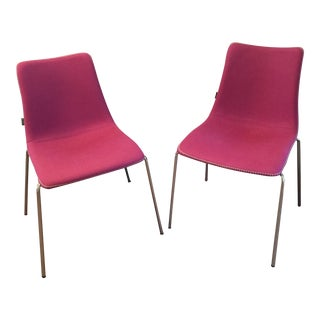 Zebra Pop Purple Frame Chairs - A Pair