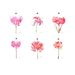 Pink botanical set of six