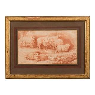 Sheep drawing c. 1865