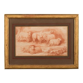 Sheep drawing c. 1865