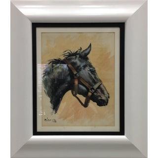 Spanish Horse Portrait, 1958
