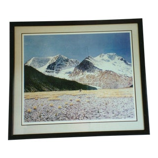 """""""Columbia Wilderness"""" Print by Alan Curtis"""