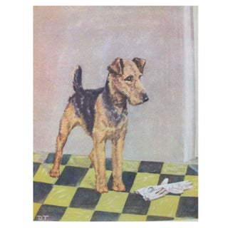 Vintage Diana Thorne Print - Airedale