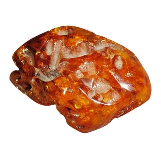 Oversized Organic Amber From Mexico