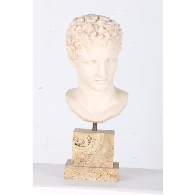 Image of Vintage Plaster Bust After Apollo