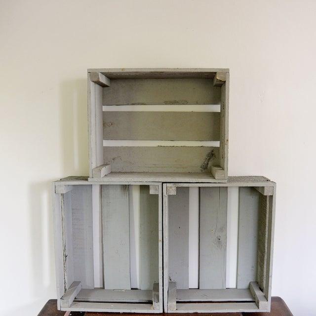 Image of Vintage Fruit Cases - Set of 3