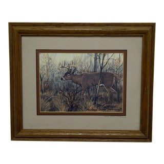 "Michael Glenn Monroe ""Whitetail Buck"" Framed Animal Print"