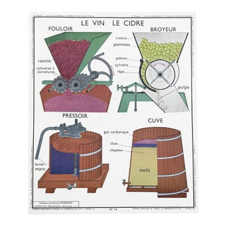 "Vintage French Educational Double-Sided ""Wine / Cider / Tractor & Farm Equipment"" School Poster Chart"