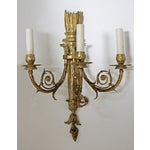 Image of Louis XVI-Style Sconces - A Pair