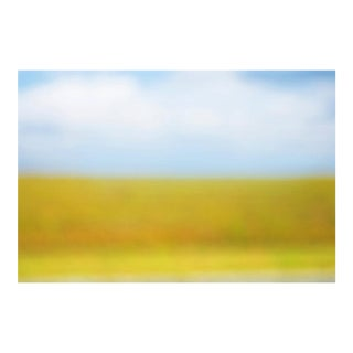 "Cheryl Maeder ""Everglades I"" Photographic Watercolor Print"