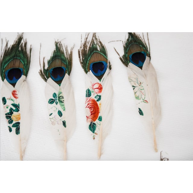 Painted Peacock Feathers - Set of 14 - Image 6 of 8