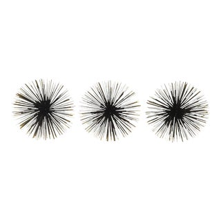 "10"" Sea Urchins Wall Decor - Set of 3"