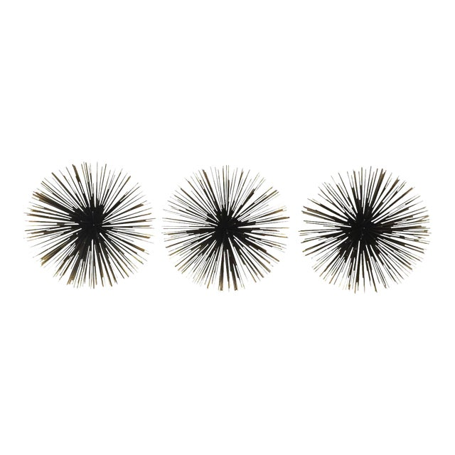 10 sea urchins wall decor set of 3 chairish. Black Bedroom Furniture Sets. Home Design Ideas