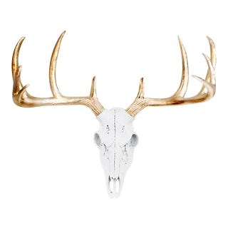 White & Metallic Gold Faux Antlers Mini Deer Skull by Wall Charmers