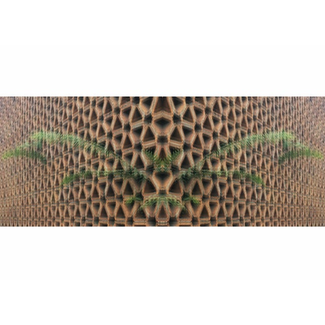 Fern vs Geostructure Photo Collage Print - Image 1 of 4