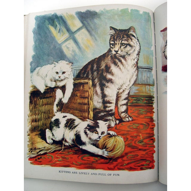 1928 Animal Friends Story Book - Image 9 of 10