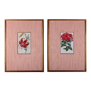 Framed F. Waller Botanical Engravings - a Pair