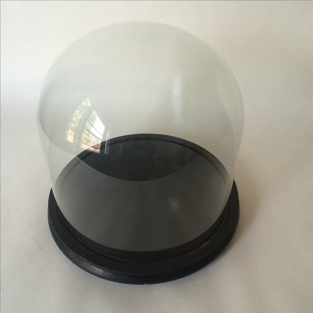 Victorian Cloche Dome with Stand - Image 3 of 8