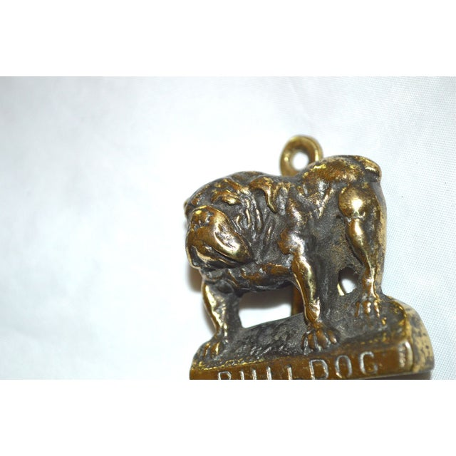 Little Bulldog Door Knocker Chairish