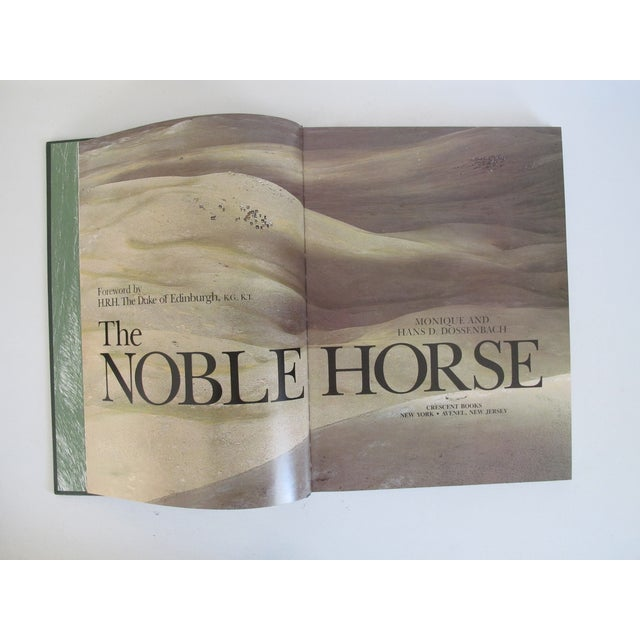 Image of The Noble Horse Book