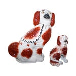 Image of English Staffordshire King Charles Spaniels