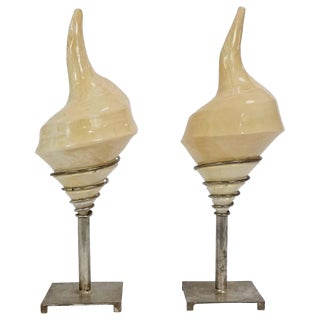 Pair of Shell Lamps