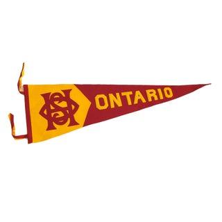 """Huge Felted Wool Applique """"Ontario"""" Pennant"""