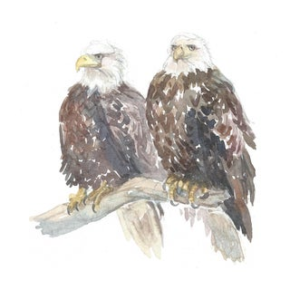 Lexie Armstrong Pair of Eagles Watercolor Painting