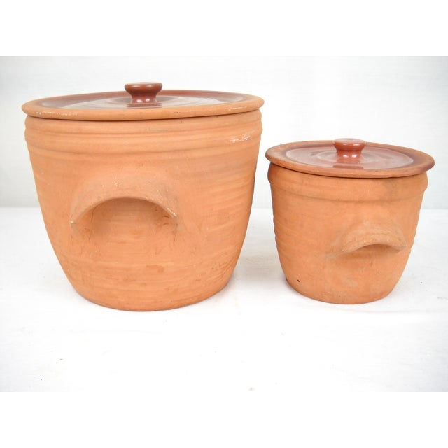 Image of English Terracota Pots - Pair