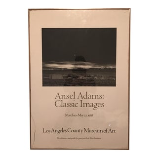 Ansel Adams Photography Poster